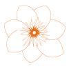 Blüten für die Seele
